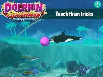Dolphin Paradise: Wild Friends на андроид