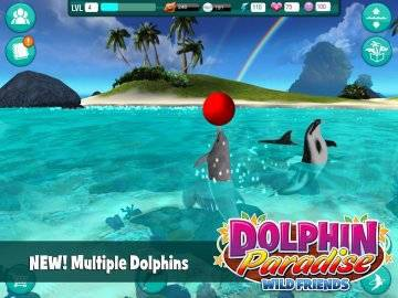 Dolphin Paradise: Wild Friends секреты