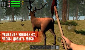 The Survivor: Rusty Forest секреты