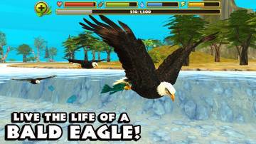 Eagle Simulator взлом