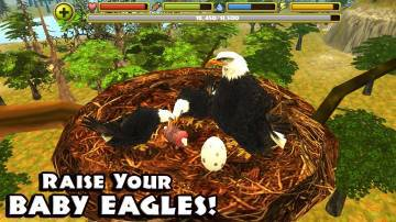 Eagle Simulator секреты