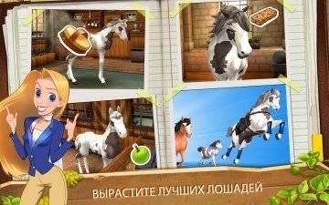 Horse Haven World Adventures читы