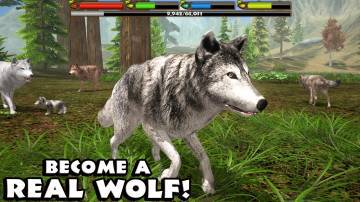 Ultimate Wolf Simulator взлом